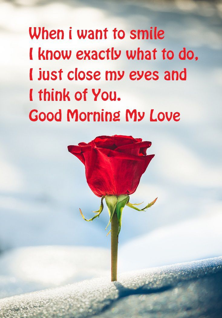 50 Good Morning Love Quotes To Romanticize Your Day